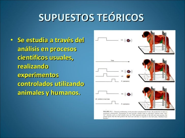 SUPUESTOS TEÓRICOS  <ul><li>Se estudia a través del análisis en procesos científicos usuales, realizando experimentos cont...