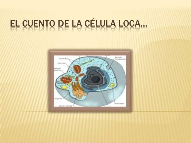 EL CUENTO DE LA CÉLULA LOCA…
