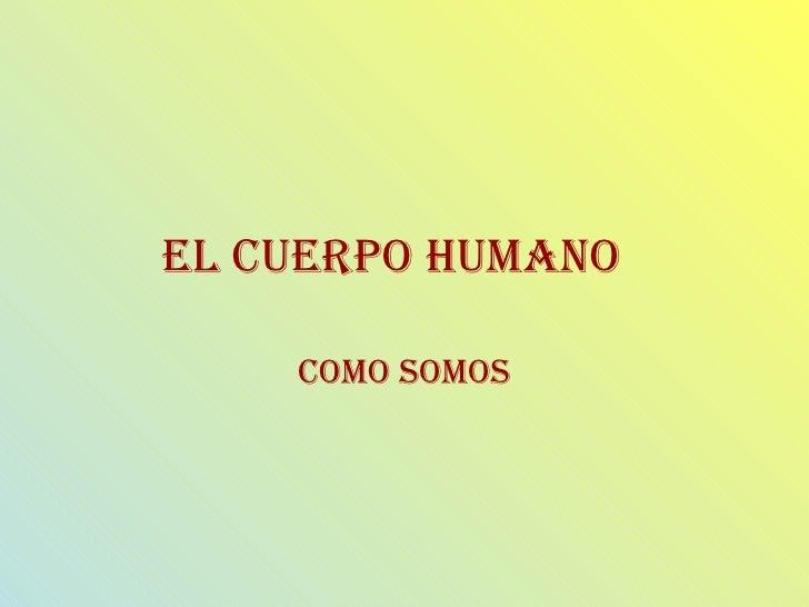 EL CUERPO HUMANO Como somos