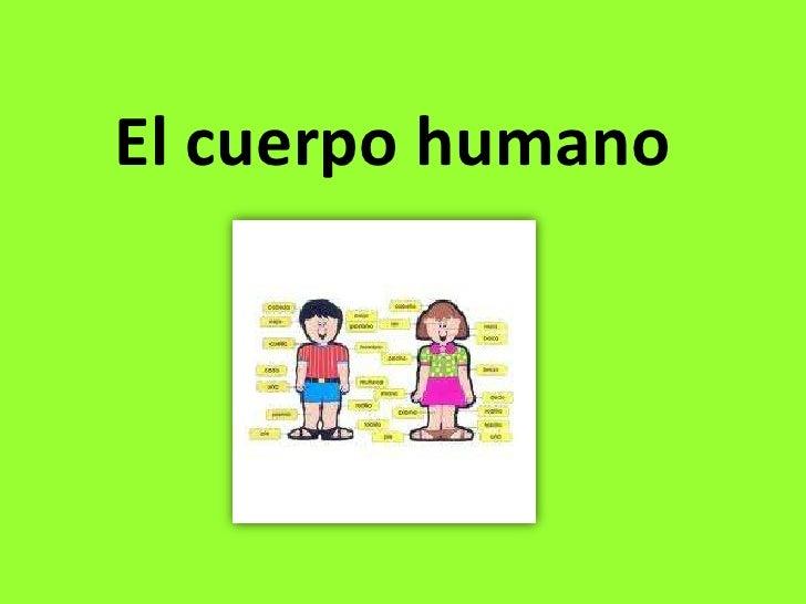 El cuerpo humano<br />