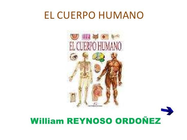 EL CUERPO HUMANOWilliam REYNOSO ORDOÑEZ