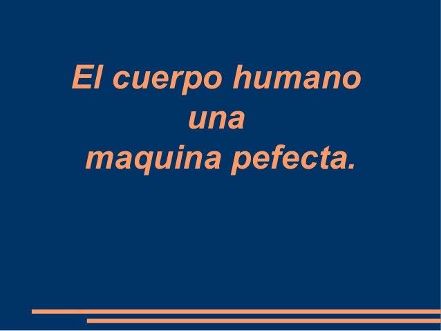El cuerpo humano una maquina pefecta.