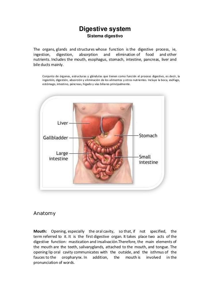 El cuerpo humano inglés