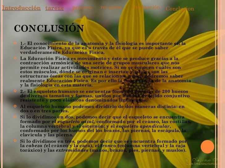 Atractivo Introducción A La Anatomía Y Fisiología Ppt Festooning ...
