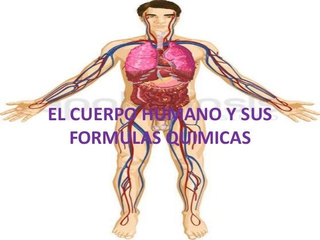 EL CUERPO HUMANO Y SUS FORMULAS QUIMICAS