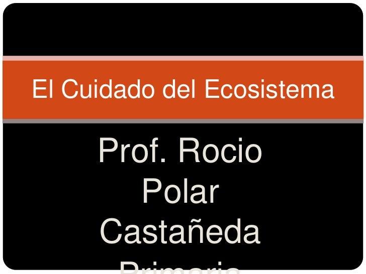 El Cuidado del Ecosistema     Prof. Rocio        Polar     Castañeda
