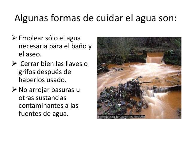 El cuidado del medio ambiente diapositivas diana for 5 cuidados del suelo