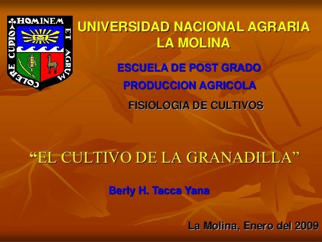 """""""EL CULTIVO DE LA GRANADILLA""""UNIVERSIDAD NACIONAL AGRARIALA MOLINAESCUELA DE POST GRADOPRODUCCION AGRICOLAFISIOLOGIA DE CU..."""