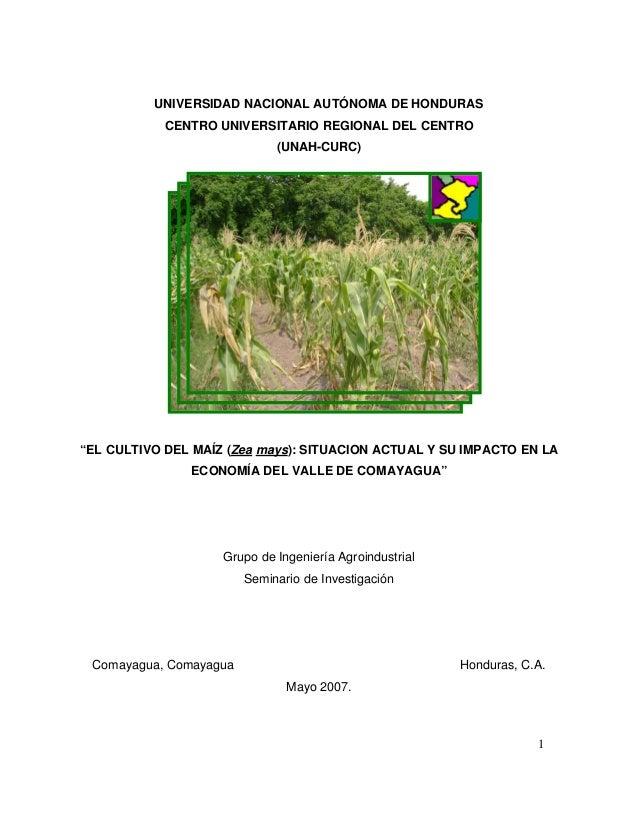 """UNIVERSIDAD NACIONAL AUTÓNOMA DE HONDURAS CENTRO UNIVERSITARIO REGIONAL DEL CENTRO (UNAH-CURC) 1 """"EL CULTIVO DEL MAÍZ (Zea..."""