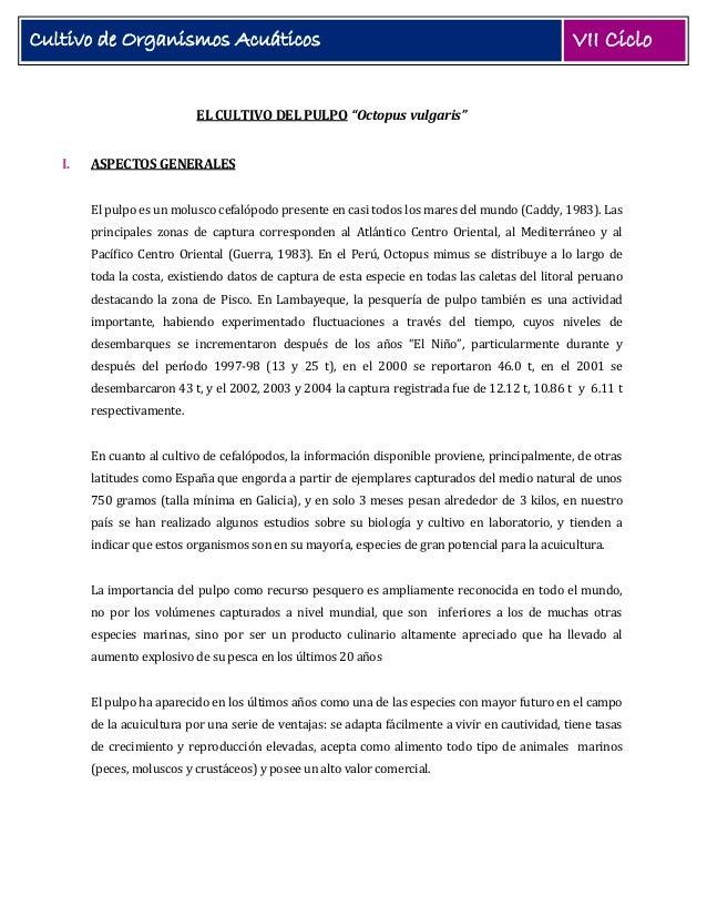 """Cultivo de Organismos Acuáticos  VII Ciclo  EL CULTIVO DEL PULPO """"Octopus vulgaris"""" I.  ASPECTOS GENERALES El pulpo es un ..."""