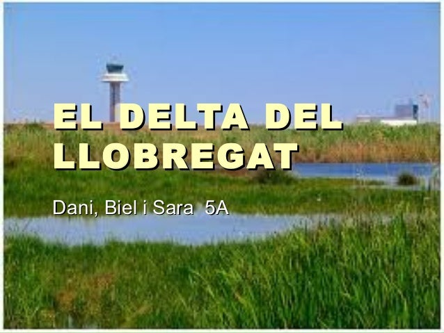 EL DELTA DELEL DELTA DEL LLOBREGATLLOBREGAT Dani, Biel i Sara 5ADani, Biel i Sara 5A