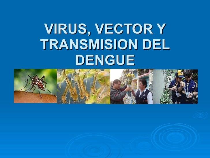 VIRUS, VECTOR Y TRANSMISION DEL DENGUE
