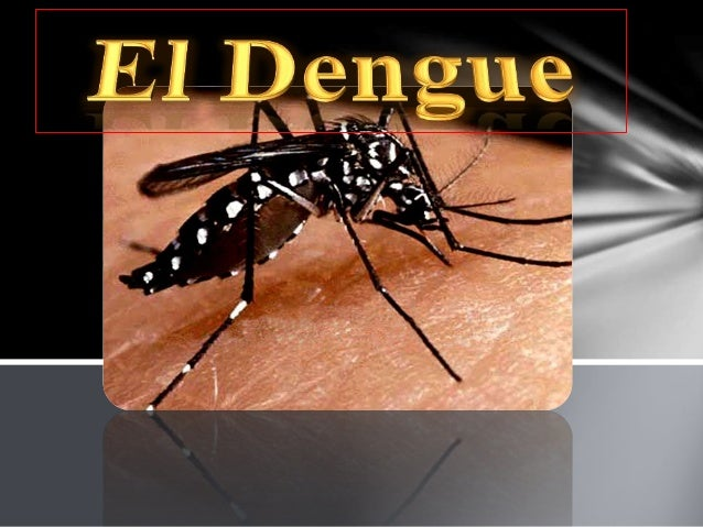 El dengue es una enfermedad infecciosa típica de zonas tropicales y templadas, transmitida por un mosquito Aedes Aegypti i...