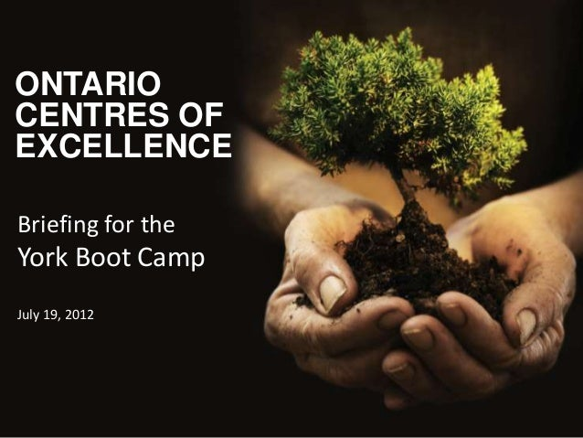ONTARIO CENTRES OF EXCELLENCE Briefing for the  York Boot Camp July 19, 2012