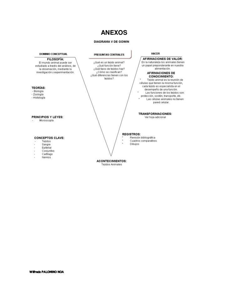 El diagrama v de gowin y su potencial como instrumento de investiga…