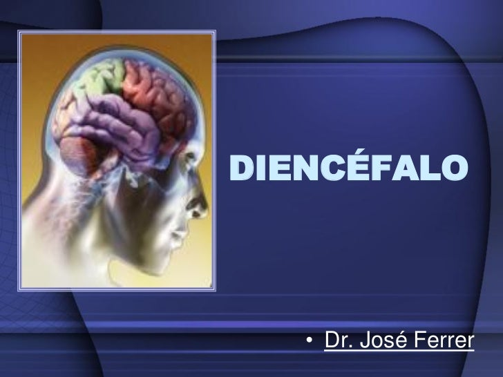 DIENCÉFALO   • Dr. José Ferrer