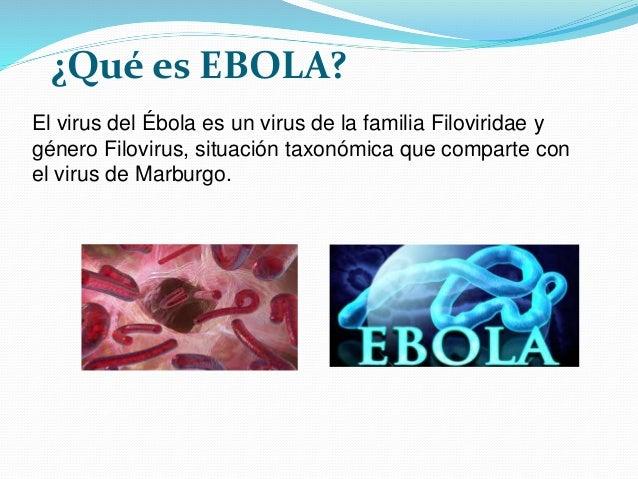 El ebola Slide 3