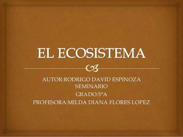 AUTOR:RODRIGO DAVID ESPINOZA SEMINARIO GRADO:5°A PROFESORA:MILDA DIANA FLORES LOPEZ