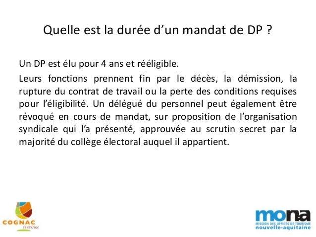 Webseminaire Mona 07 06 2017 L Election Des Delegues Du Personne