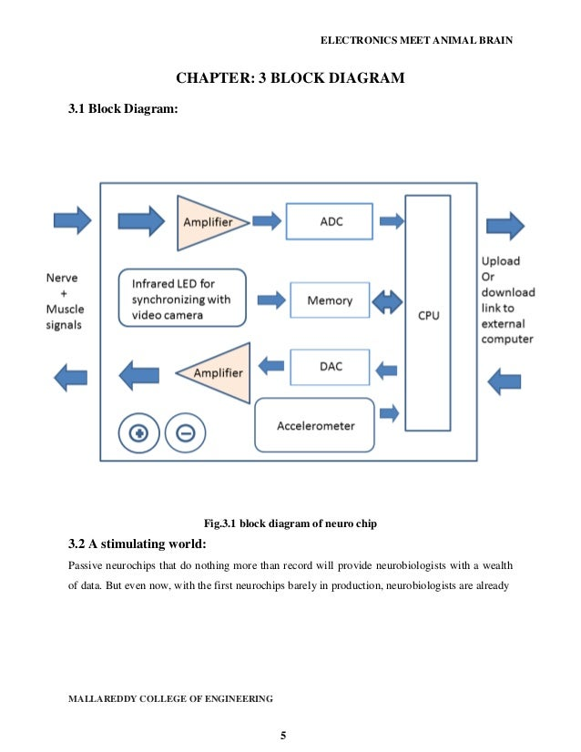 Fancy What Is A Block Diagram In Electronics Festooning - Electrical ...
