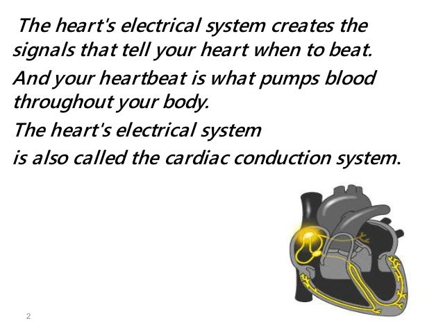 What Is The Name Of The Body S Natural Pacemaker