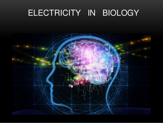 ELECTRICITY IN BIOLOGY