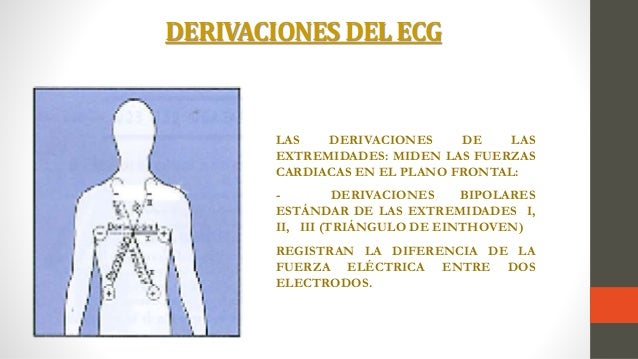 Electrocardiograf a ambulatoria y electrocardiograma for Cuarto espacio intercostal