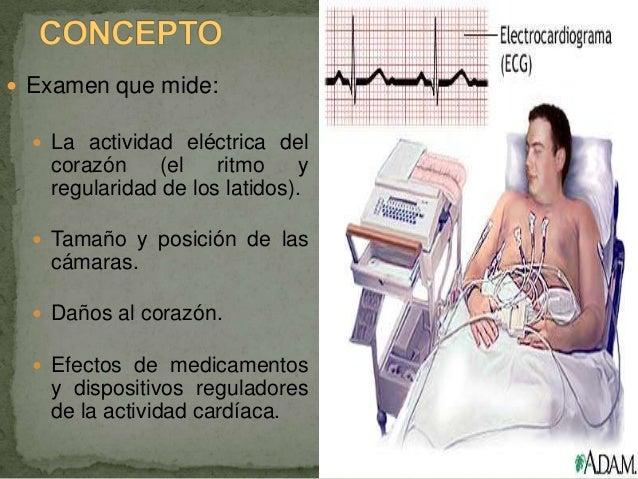 Examen que mide:   La actividad eléctrica del   corazón    (el    ritmo     y   regularidad de los latidos).   Tamaño ...
