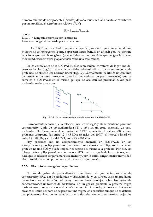 Electroforesis123