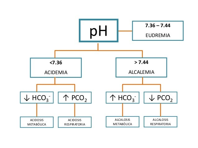 Pdf alcalosis metabolica acidosis y