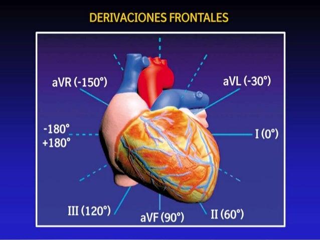 DERIVACIONES DEL PLANO FRONTAL • Registran el potencial total de un punto en el cuerpo • Ideado por Frank Wilson • Unió D1...