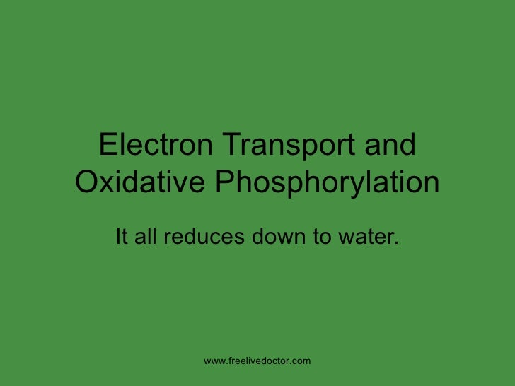 Electron Transport and Oxidative Phosphorylation It all reduces down to water. www.freelivedoctor.com