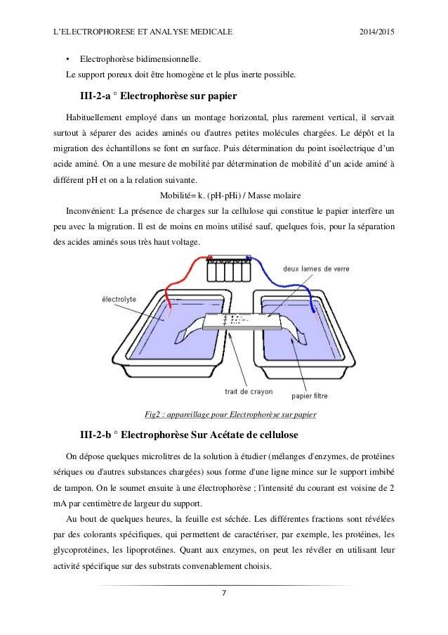 L Electrophor 232 Se Et L Analyse M 233 Dicale