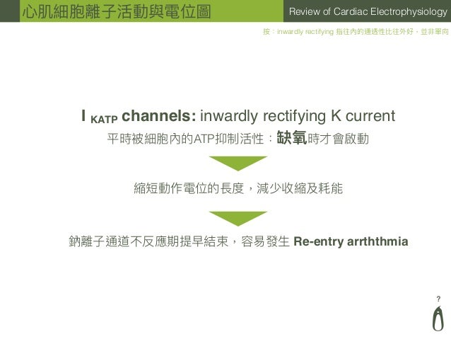 ? Review of Cardiac Electrophysiology I KATP channels: inwardly rectifying K current 平時被細胞內的ATP抑制活性:缺氧時才會啟動 按:inwardly rec...