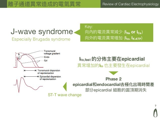 ? Review of Cardiac Electrophysiology J-wave syndrome Especially Brugada syndrome Key: 向內的電流異異常減少 (INa or ICa) 向外的電流異異常增加 ...