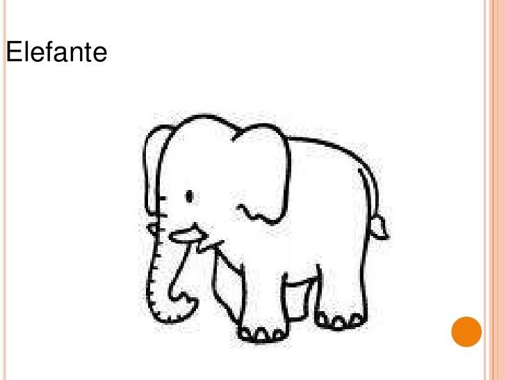 Elefante<br />