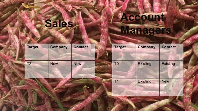 Sales Account Managers Target Company Contact T2 New New Target Company Contact T0 Existing Existing T1 Existing New