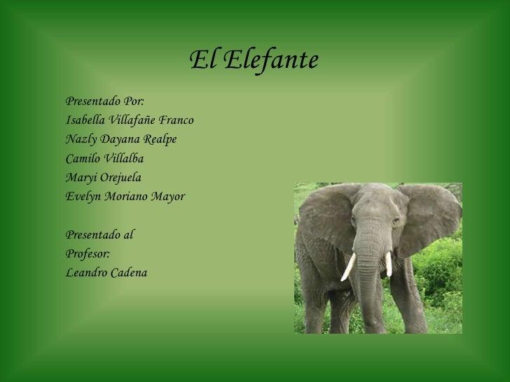 El Elefante Presentado Por: Isabella Villafañe Franco Nazly Dayana Realpe Camilo Villalba Maryi Orejuela Evelyn Moriano Ma...