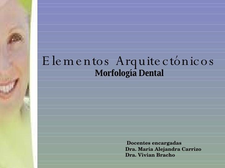 Elementos Arquitectónicos Morfología Dental Docentes encargadas  Dra. Maria Alejandra Carrizo Dra. Vivian Bracho