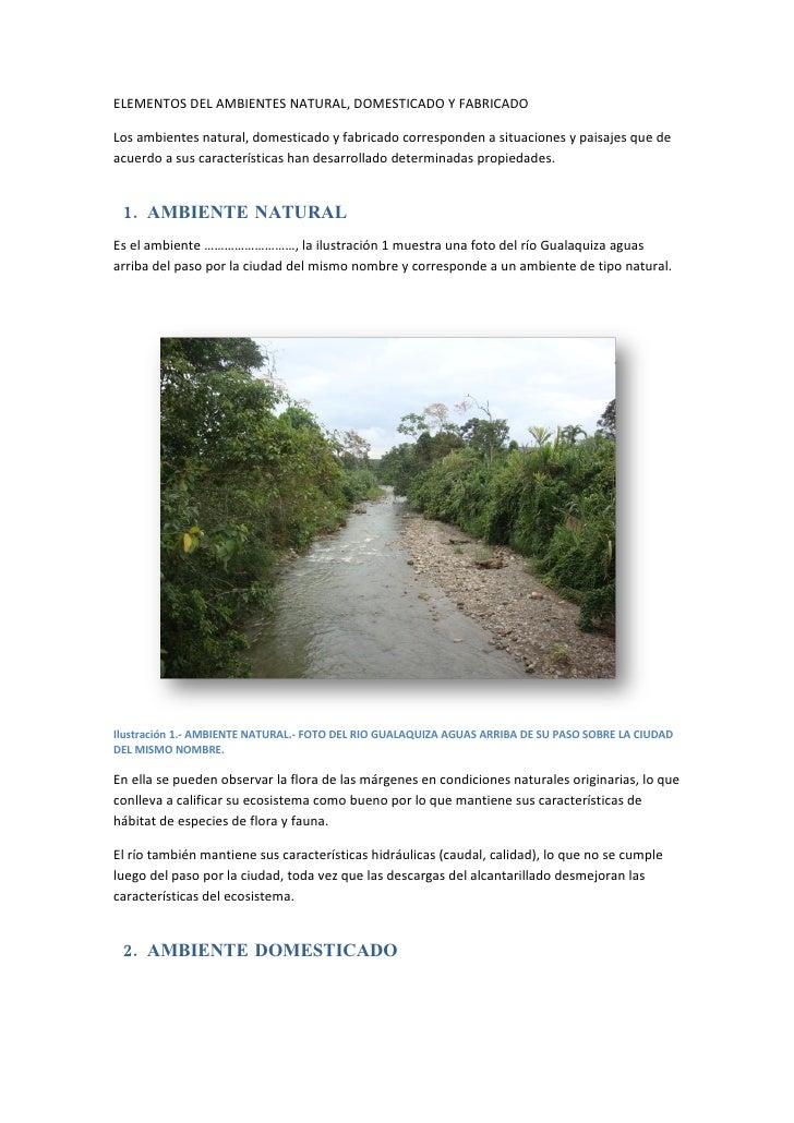 ELEMENTOS DEL AMBIENTES NATURAL, DOMESTICADO Y FABRICADO  Los ambientes natural, domesticado y fabricado corresponden a si...