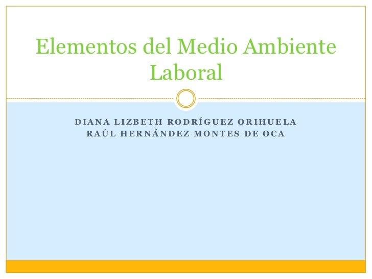 Diana Lizbeth Rodríguez Orihuela<br />Raúl Hernández Montes de Oca<br />Elementos del Medio Ambiente Laboral<br />