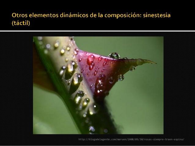 http://www.fotosraras.com.ar/2011/11/cuadros-de-salvador-          dali.html