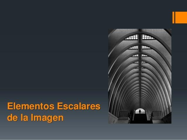 Elementos Escalares de la Imagen