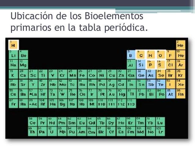 Elementos qumicos ms importantes para el buen funcionamiento del cu ubicacin de los bioelementos primarios en la tabla peridica urtaz Images