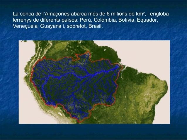 La conca de l'Amaçones abarca més de 6 milions de km2 , i engloba terrenys de diferents països: Perú, Colòmbia, Bolívia, E...