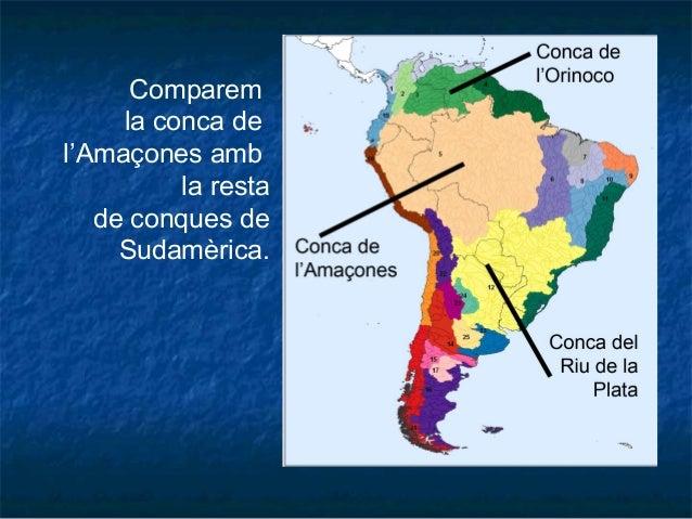 Comparem la conca de l'Amaçones amb la resta de conques de Sudamèrica.