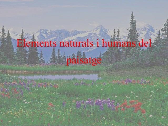 Elements naturals i humans del paisatge