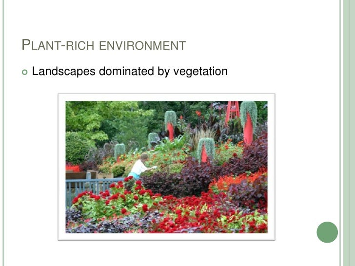 Plant-rich environment<br />Landscapes dominated by vegetation<br />