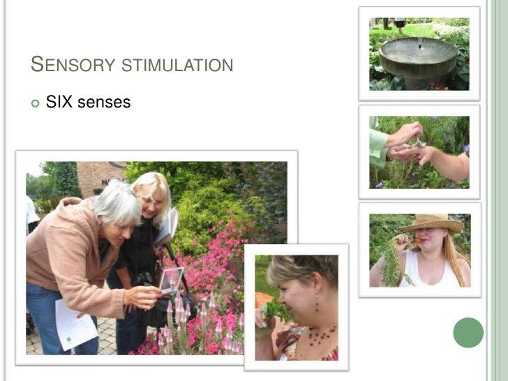 Sensory stimulation<br />SIX senses<br />