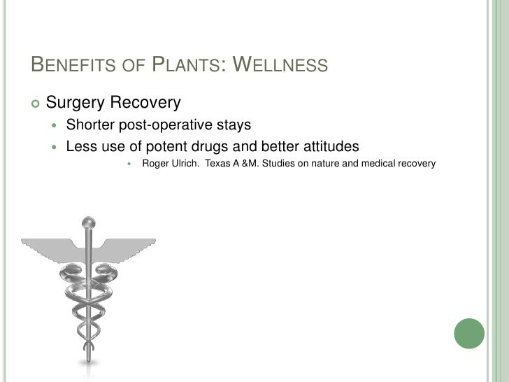 Benefits of Plants: Wellness<br />Surgery Recovery<br />Shorter post-operative stays<br />Less use of potent drugs and bet...